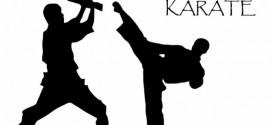 """Održan 5. tradicionalni karate turnir u Osniću """"Sveta Petka 2015″"""