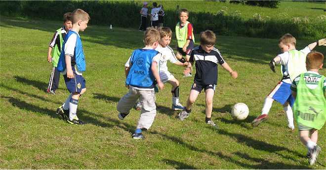 Photo of Danas Fair Play liga Timočke krajine za mališane