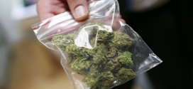 UHVATILI GA KOD BOLJEVCA: Skrivao 35 grama marihuane u donjem vešu