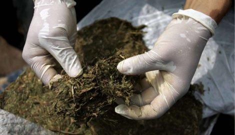 U Boru zaplenjeno 584 grama marihuane, uhapšene dve osobe