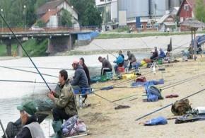 4. Kup RMVI Srbije u ribolovu na Popovoj Plaži