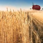 """""""Agromarket"""" preuzima preostale akcije Poljoprivrednog dobra iz Zaječara"""