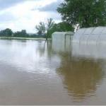 poplavaaa