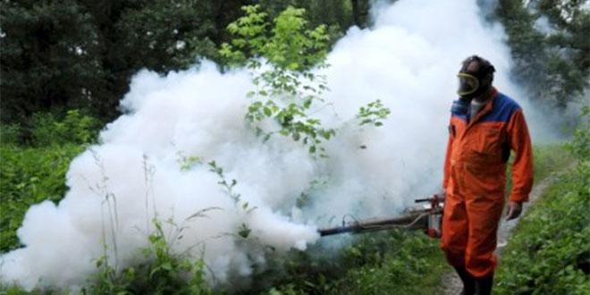 Sledeće nedelje zaprašivanje insekata na području Zaječara