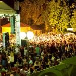Green-Heart-Fest---2-dan-SOKOBANJA