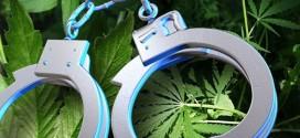 Negotinac uhapšen zbog droge!