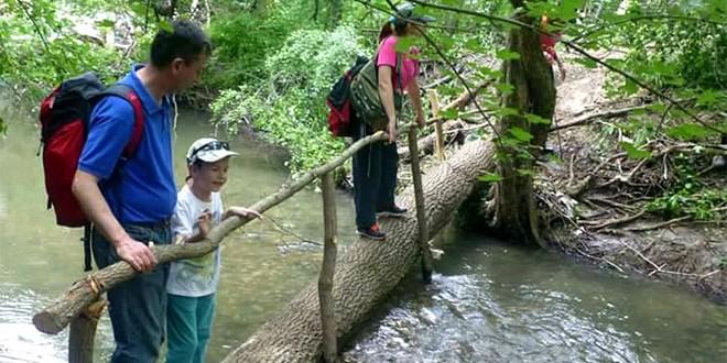 Planinari postavili most, lopovi ga isekli i odneli