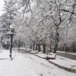 Vadite kape i rukavice iz fioke ZABELEO SE ZAJEČAR -Tokom dana oblačno sa slabim snegom