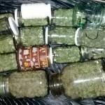 Marihuana-1