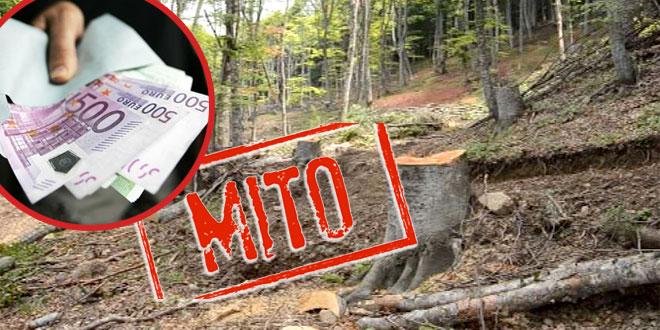 """Zbog mita za seču šuma uhapšeno odgovorno lice Nacionalnog parka """"Đerdap"""""""
