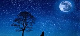 Pred nama je Bogojavljenska noć -ZAMISLITE ŽELJU TAČNO U PONOĆ!