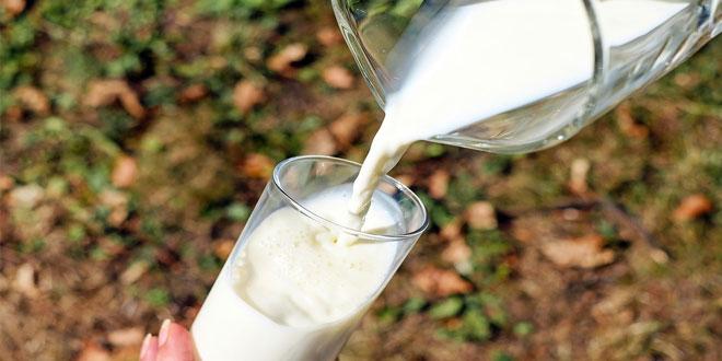 Proizvođači mleka u velikom problemu: Sve izvesnije zatvaranje farmi mleka!