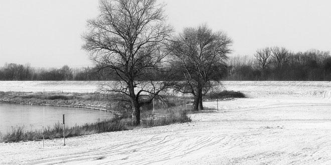 Vraća se zima, u Zaječaru ponovo sneg!