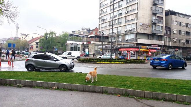 Photo of Kiša u Zaječaru! Evo kada prestaje…