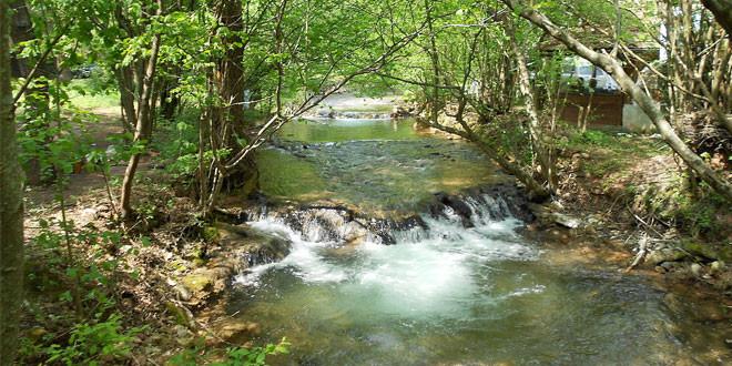 """Novi nacionalni park od naredne godine -U """"ELITNOM"""" DRUŠTVU KUČAJ I BELJANICA"""