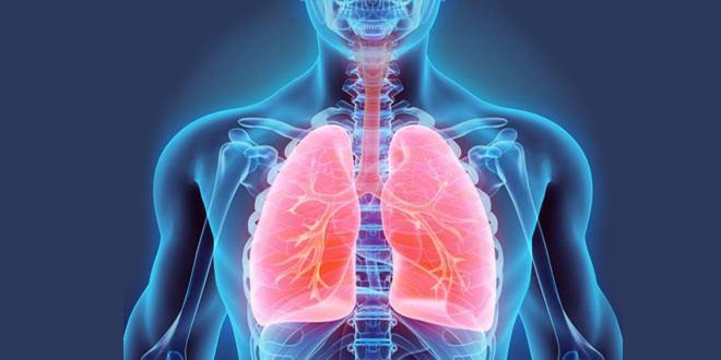 U petak u Velikom Izvoru biće održana tribina o donorstvu, transplataciji pluća i cističnoj fibrozi!