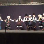 Festival-instrumentalne-tradice-Grljan