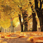 Poslednjeg dana leta hladno i kišovito, na planinama SNEG -Večeras zvanično stiže jesen