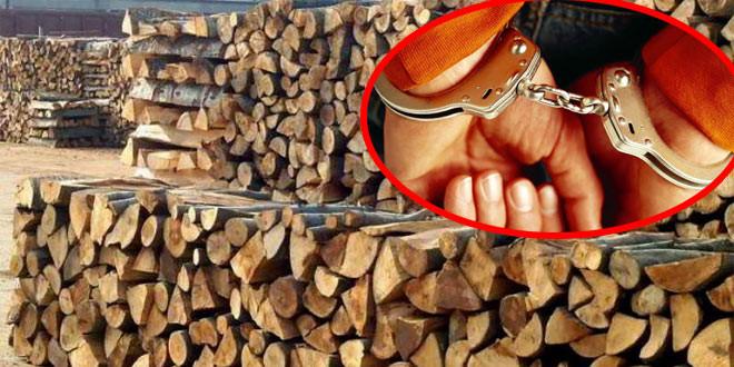 Uhapšen radnik Šumske sekcije Boljevac: Uzeo mito za žigosanje i izradu propratnice za prevoz drva