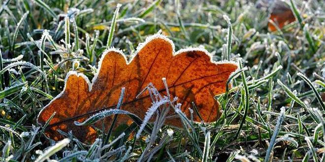 Jutros u 5 sati u Zaječaru izmereno -2 stepena, tokom dana SUNČANO I TOPLO za ovo doba godine