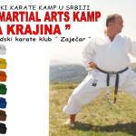 Karate--Gamzigradska-banja