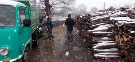 Drva za najugroženije stigla u pravi čas: OSTALO MI JE JEDNO DRVO U KUĆI, OVO MI MNOGO ZNAČI