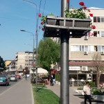 MIRIŠE NA LETO: Danas u Zaječaru sunčano i toplo, do 29 stepeni