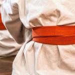 Otkazan karate seminar zbog sprečenosti dolaska Vladimira Jorge!
