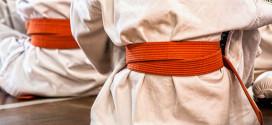 Regionalni karate seminar tradicionalnog karate DO-a 22. i 23. juna u Zaječaru -Instruktor VLADIMIR JORGA