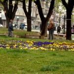 U većem delu Srbije sunčano, na istoku zemlje kišovito i vetrovito -Narednih dana u Zaječaru još hladnije