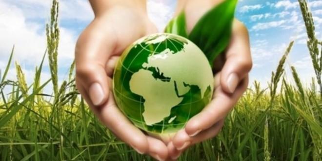 Svetski dan zaštite životne sredine biće obeležen i u Zaječaru