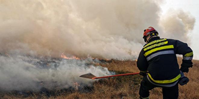 Više od 200 ljudi angažovano na gašenju požara na Staroj planini