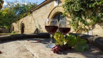 Photo of Osetite DUH BALKANA na putevima vina